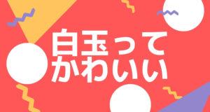 成城石井で買うべきスイーツは「新杵」の白玉クリームぜんざい死ぬほどうまいよ