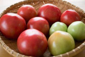 トマトパスタ塩にんにくだけでできる何度も作ってるパスタ